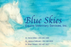 Blue Skies Equine Veterinary Services