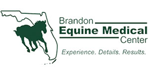 Brandon Equine Medical Center | Horse Hospital in Brandon, FL