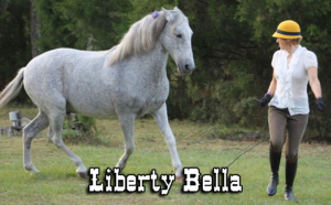Liberty Bella