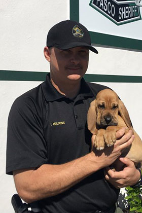 K9-Knox-Puppy2 Wilkins